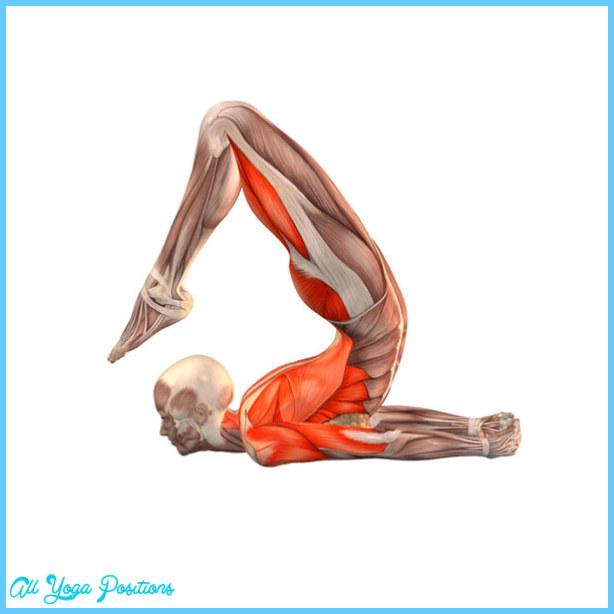 Locust Yoga Pose_2.jpg