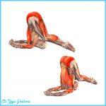 Plow Pose In Yoga_11.jpg