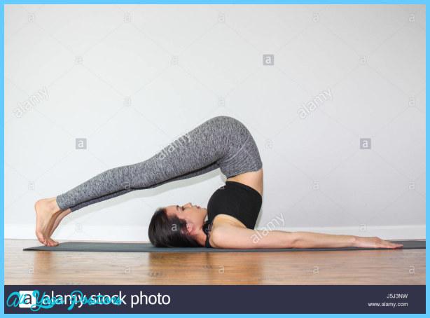 Plow Pose In Yoga_15.jpg
