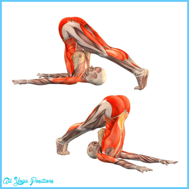 Plow Pose In Yoga_3.jpg