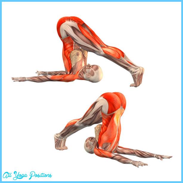 Plow Pose In Yoga_3.jpg
