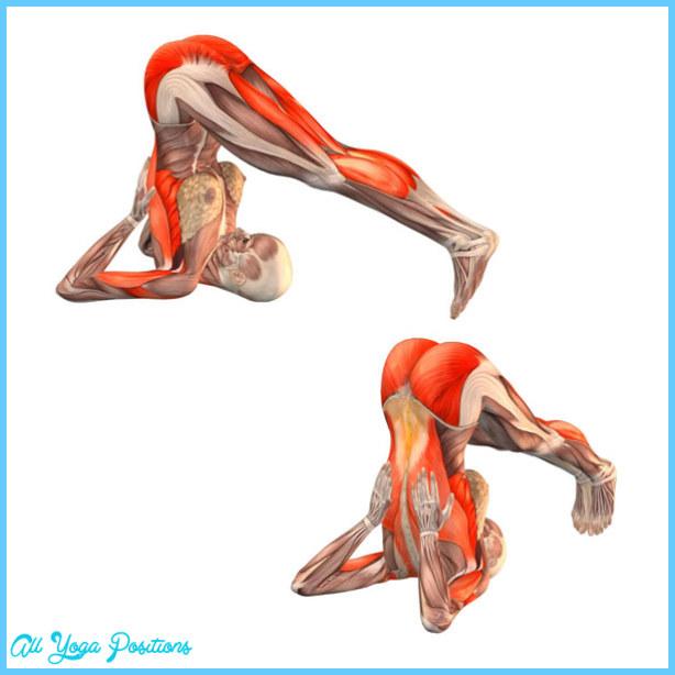 Plow Yoga Pose_3.jpg