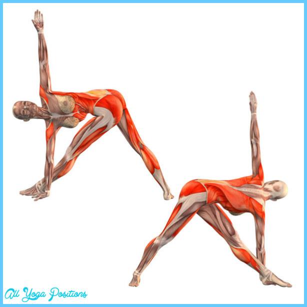 Triangle Yoga Pose_17.jpg
