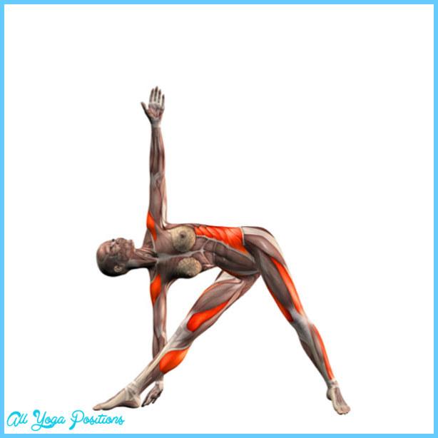 Triangle Yoga Pose_5.jpg
