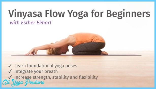 Vinyasa Flow Yoga Poses_20.jpg