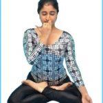 Yoga Pranayama_3.jpg