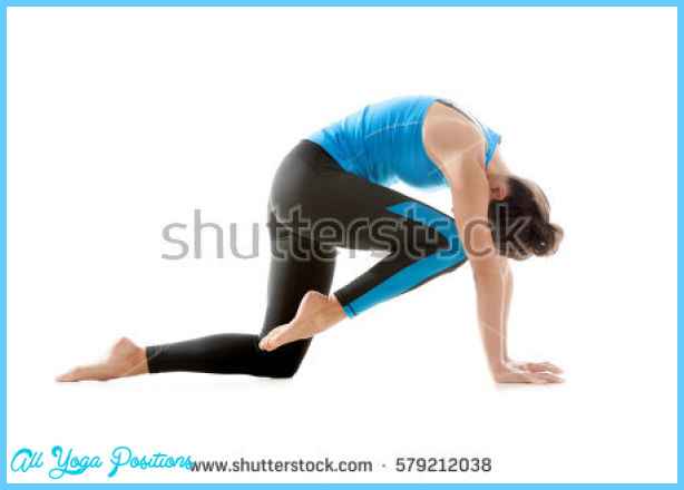 Bird Dog Yoga Pose_1.jpg