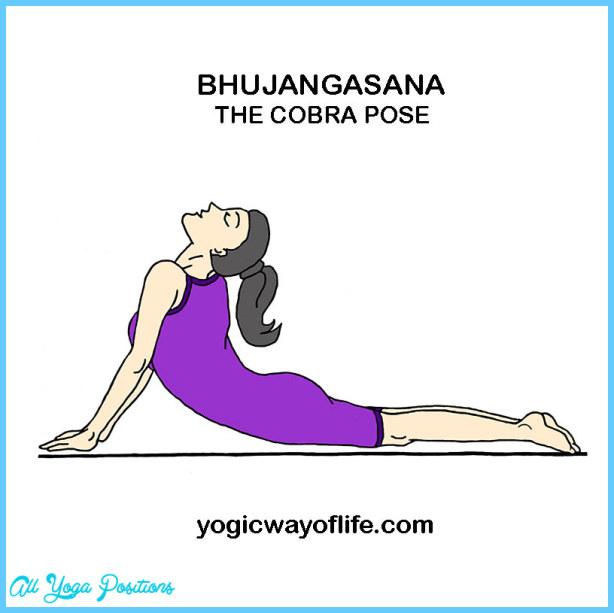 Cobra Pose - Bhujangasana_6.jpg