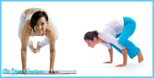 Crane Pose Yoga_0.jpg