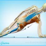 Cueing Yoga Poses_16.jpg