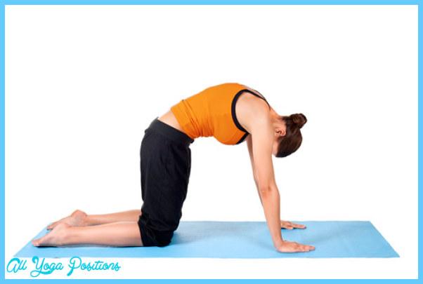 Easy Yoga Pose_11.jpg
