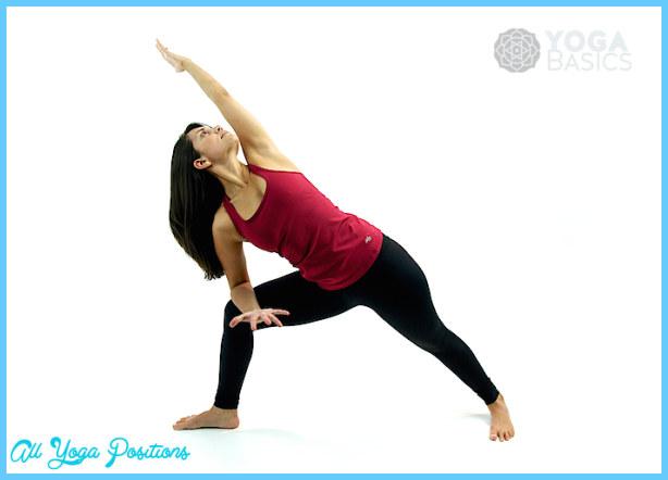 Extended Side Angle Pose - Utthita Parsva Konasana_4.jpg