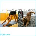Funny Yoga Poses Pictures_20.jpg