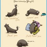 Funny Yoga Poses Pictures_5.jpg