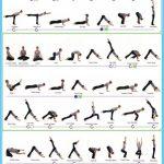 Hatha Yoga Poses Chart_14.jpg