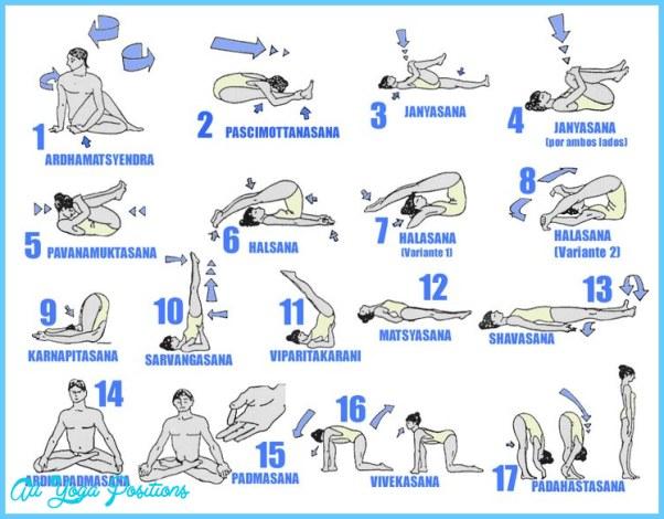 Hatha Yoga Poses Chart_19.jpg