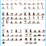 Hatha Yoga Poses Chart_7.jpg