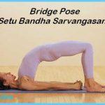 Setu Bandha Sarvangasana _6.jpg