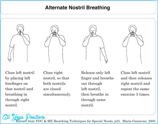 alternative nostril breathing The ins and outs of alternate nostril breathing ever wondered why you feel so  good after alternate nostril breathing  let me explain.