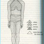 Ashtanga Yoga Breathing_5.jpg