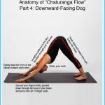 Chaturanga Yoga Pose_11.jpg