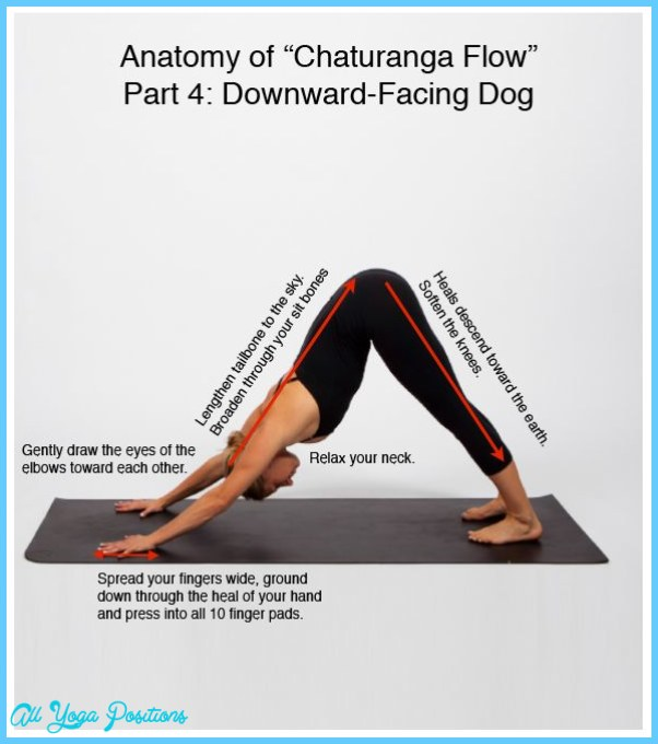 Chaturanga Yoga Pose_11.jpg