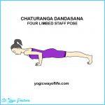 Chaturanga Yoga Pose_16.jpg