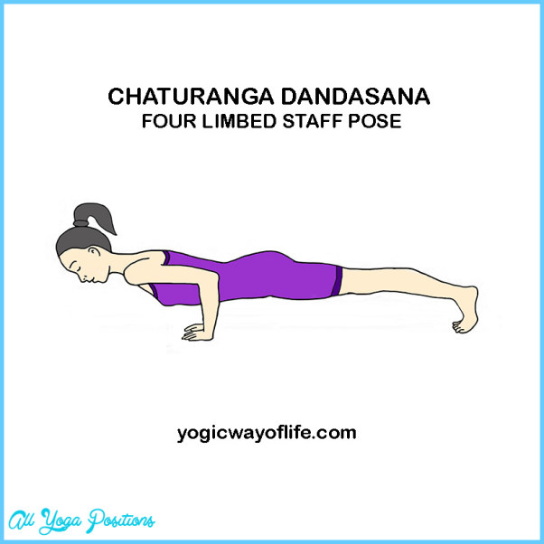 Chaturanga Yoga Pose_16.jpg
