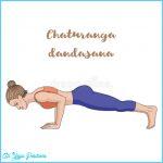 Chaturanga Yoga Pose_9.jpg