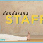 DANDASANA (STAFF POSE)_17.jpg