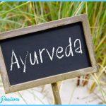 What is Ayurveda?_11.jpg