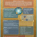 What is Ayurveda?_15.jpg