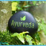 What is Ayurveda?_5.jpg