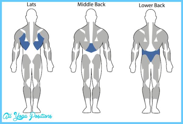Back-Exercises-for-Men.png