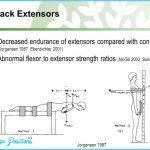 Back Extensor Endurance Test _7.jpg