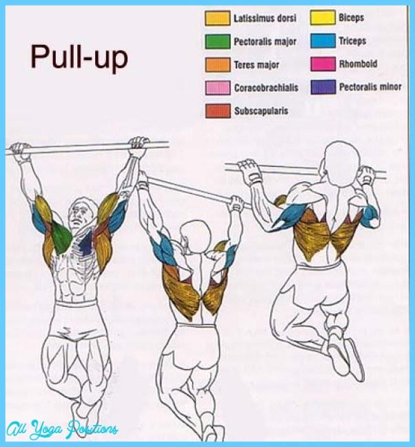 best-upper-body-building-exercise.jpg