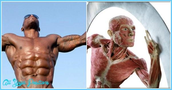 Better Control of Body Fat_2.jpg