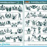 bodybuilding_fitness2_catalog.jpg