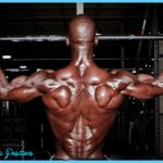 bodyweight-back-exercises-workout-routines.jpg