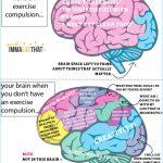 brain-exercise-obsessino-graphic3.jpg