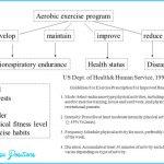 DEVELOPING A CARDIORESPIRATORY ENDURANCE EXERCISES PROGRAM_3.jpg