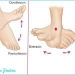 dorsi-and-plantar-flexion.jpg