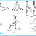 Hip and Trunk Stretch Exercises_1.jpg