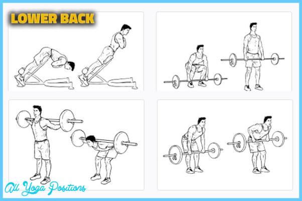 Lower-Back-Exercises.jpg