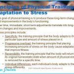 PRINCIPLES OF PHYSICAL TRAINING: ADAPTATION TO STRESS_13.jpg
