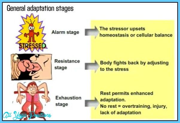 PRINCIPLES OF PHYSICAL TRAINING: ADAPTATION TO STRESS_14.jpg