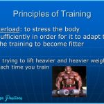 PRINCIPLES OF PHYSICAL TRAINING: ADAPTATION TO STRESS_4.jpg