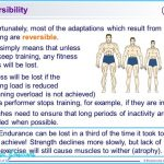 Reversibility Adapting to a Reduction in Fitness Training_7.jpg