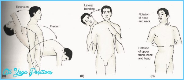 Trunk/Low-Back Lateral Flexion_14.jpg