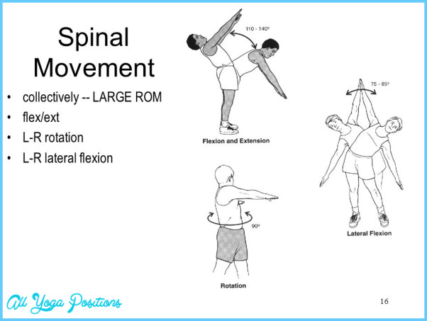 Trunk/Low-Back Lateral Flexion_6.jpg